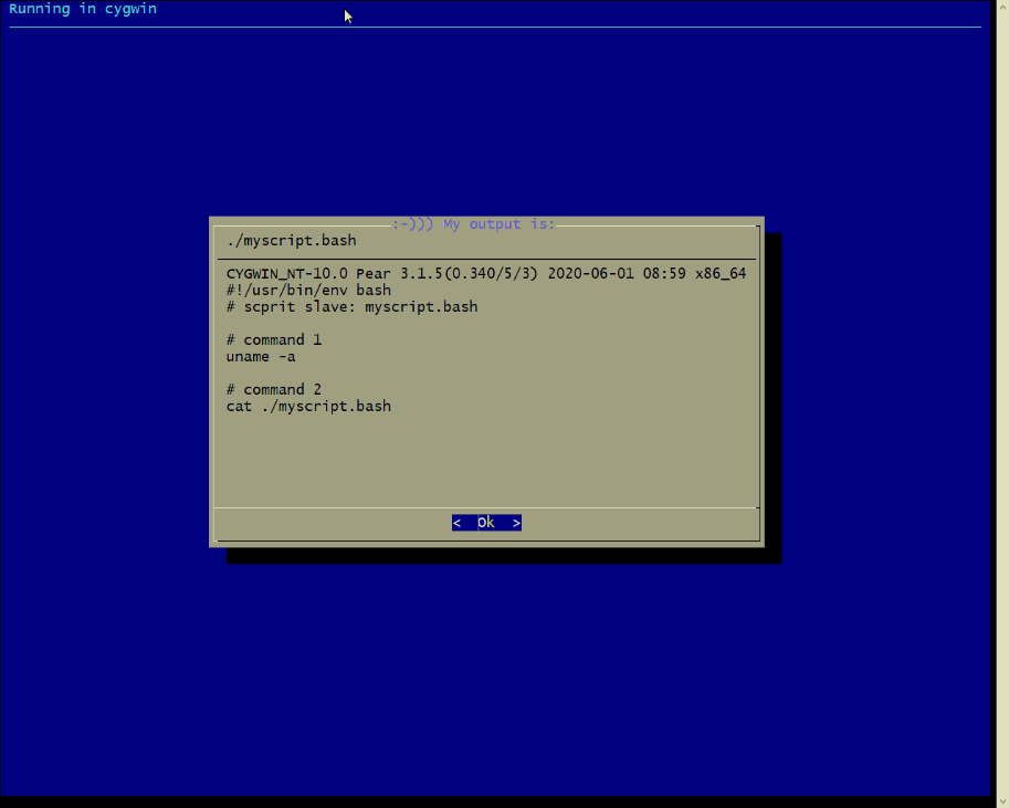 cygwin.png